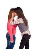 Two girl friend gossiping Stock Image