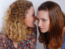 Two girl friends sharing a secret stock images