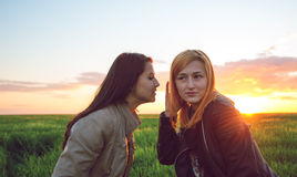 Two girl friends whispering secrets. People communication and friendship concept- Two girl friends whispering secrets Stock Images