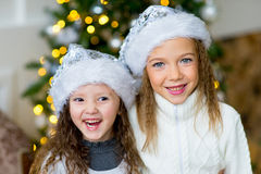 Two girl, gift, Christmas tree, white hats Royalty Free Stock Photo