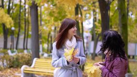 Two girl look on falling leaves. Two girl under the maple tree look on falling leaves. Slow motion stock video footage