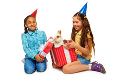 Two girl opening present surprised to find rabbit Stock Photos
