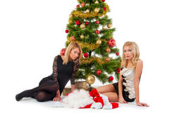 Two girl waiting santa near christmas tree Royalty Free Stock Photo