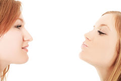 Two girlfriends Royalty Free Stock Photo
