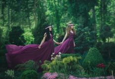 Two girlfriends, a blonde and a brunette, are holding hands. Background flowering garden. Princesses are dressed in luxurious purp royalty free stock photography