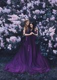 Two girlfriends, a blonde and a brunette, with love hugging each other. Background of a beautiful blooming lilac garden. The princ royalty free stock photo