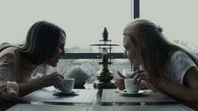 Two girlfriends drink coffee in cafe. Two smiling girlfriends drink coffee and communicate stock video footage