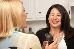 Two Girlfriends Enjoy Wine in the Kitchen Stock Image