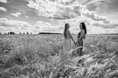 Two girlfriends in the field royalty free stock photography