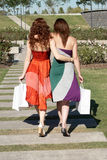 Two girlfriends going on avenue. In park Royalty Free Stock Photos