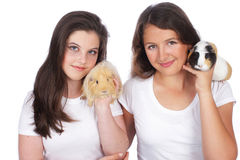 Two girlfriends with guinea pig Stock Images