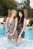 The two girlfriends in pool Stock Photography