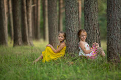Two girlfriends posing sitting in the pine forest. Stock Photography
