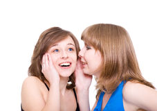 Two girlfriends talk. Stock Photo