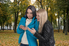 Two girlfriends walk in the park and look in phones Stock Photos