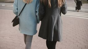 Two girlfriends walking together in the street. Young ladies in neat stylish clothes in city surroundings. Back view. Blonde and brunette females business stock video footage