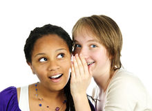 Two girlfriends whispering Stock Image