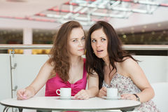 Two girls Royalty Free Stock Image