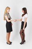 Two girls. Two young girls shaking hands Royalty Free Stock Photo