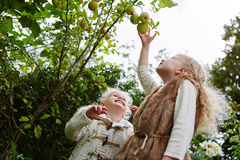 Two girls during apple harvest stock image