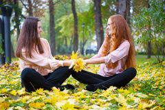 Two girls in autumn park Stock Image