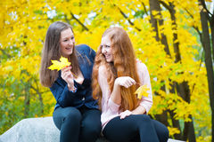 Two girls in autumn park Royalty Free Stock Photography