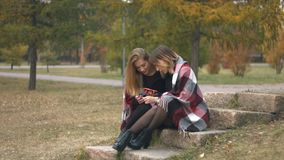 Two girls in an autumn park. Slow motion. Young girls are sitting on a stone in the park and talking cheerfully stock video