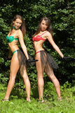 Two girls in bikini Stock Images