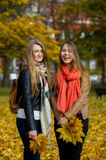 Two girls with bouquets of autumn leaves. Cute young students stand in the autumn park. Territory is completely covered by the fallen-down foliage. Girlfriends Stock Image