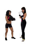 Two Girls Boxing Royalty Free Stock Photo