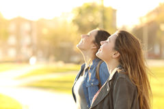 Two girls breathing fresh air in a park. Side view portrait of two happy girls breathing fresh air together in a park at sunset with a warm back light in the royalty free stock photo