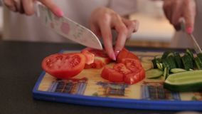 Two girls cut tomatoes and cucumbers on a Board. Two girls cut tomatoes and cucumbers on a wooden Board, close-up. Cooking vegetable salad. Healthy diet stock video