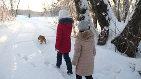 Two girls and dog and dog walk along path in winter park. Children play with dog in snow in winter in the forest. happy. Two girls and dog and dog walk along stock photos