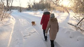 Two girls and dog and dog walk along path in winter park. Children play with dog in snow in winter in the forest. happy. Two girls and dog and dog walk along royalty free stock photos