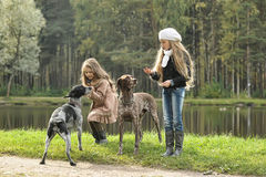 Two girls and dogs in the park Stock Photos