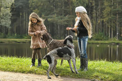 Two girls and dogs in the park stock image