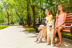 Two girls with dogs sitting in park on bench Stock Images