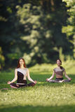 Two girls doing yoga exercises in park. Royalty Free Stock Image