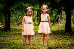 Two girls in dresses posing in the forest Stock Photos
