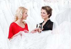 Two girls drink wine or champagne. Two girls drink alcoholic drinks while discussing and choosing the wedding gown royalty free stock images