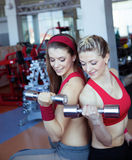 Two girls with dumbbell in fitness club Royalty Free Stock Photography