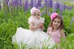Two girls in elegant dresses Royalty Free Stock Images