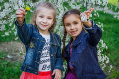 Two girls enjoying spring garden royalty free stock images