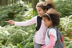 Two Girls Exploring Woods Together Royalty Free Stock Photos
