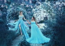 Two girls in fairy-blue, flying dresses in the wind, are walking through the spring garden. Two loving sisters of royalty free stock image