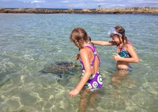 Two girls feed a sea turtle Stock Photos