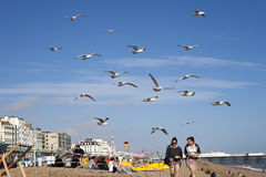Two girls with food run away from gulls who attack them on the beach Stock Photography