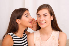 Two girls gossip on gray background Stock Photo