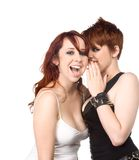 Two girls gossiping Royalty Free Stock Photo