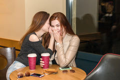 Two girls gossiping in a cafe bar Royalty Free Stock Photos